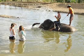 ขี่ช้างที่ ปาย เล่นน้ำกับช้าง